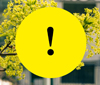 Spring flowers covered with a yellow circle with a exclamation mark in black.